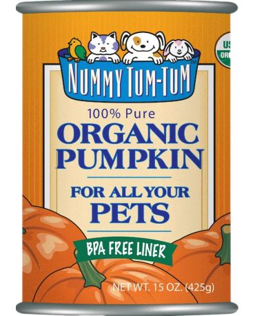 Nummy Tum-Tum Organic Pumpkin Pet Food Supplement for Dogs & Cats 15oz