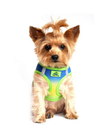 Doggie Design American River Choke Free Ombre Dog Harness
