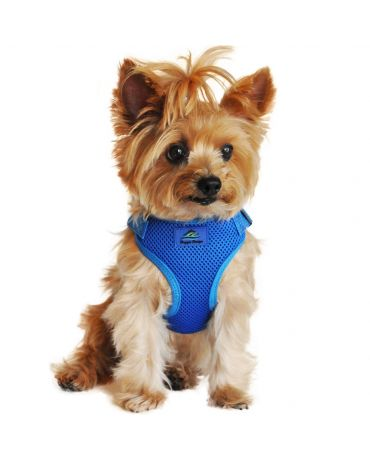 Doggie Design Wrap and Snap Choke Free Dog Harness