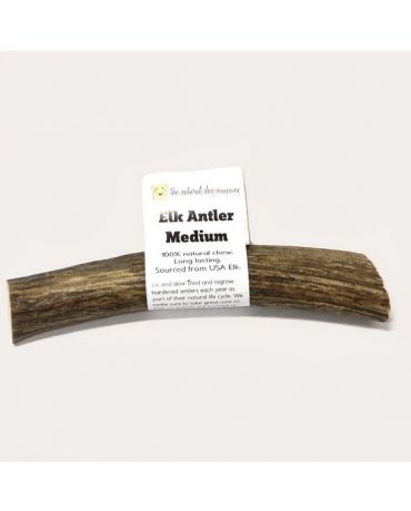 The Natural Dog Company Whole Elk Antler Dog Chew